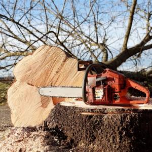 Poda y madera